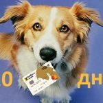 Кредитная карта Райффайзен Банка — 110 дней