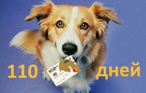 Кредитная карта Райффайзен банка 110 дней
